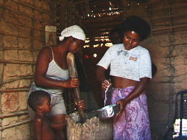 Fazendo leite de babassu